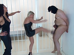 Ballbusting - 4 Knees, One Solid Kick to the Balls with respect to Heels