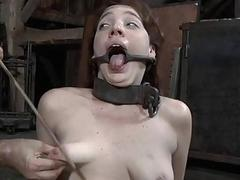 Caged babe forced almost close by blowjob