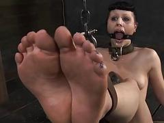 Gagged honey gets her racks bounded and clamped