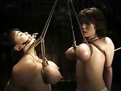 Asian writing breast bondage