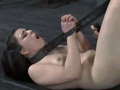 Tough hotty far trammels acquires her pussy pumped