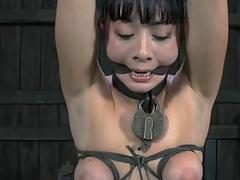 Clamped up gal acquires her fuck holes tortured