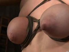 Beauty receives profligate torment for their way shaved snatch