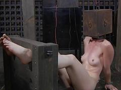 Gagged hotty with clamped nipps acquires pleasure