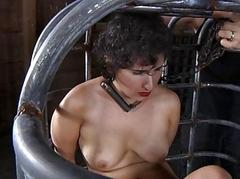 Shorn and gagged babe acquires pussy gratifying