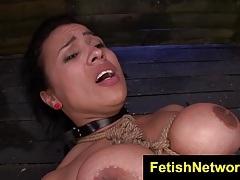 FetishNetwork Becca Diamond bound cougar