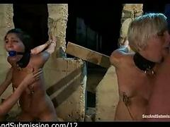 Four tied up babes mouth fucked