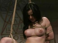 Fuzz ball poppet playing with sex slave