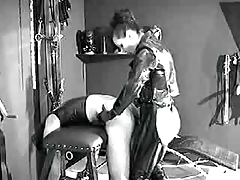 tie in on doggy