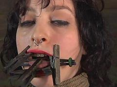 Attractive babe gets indelicate torment