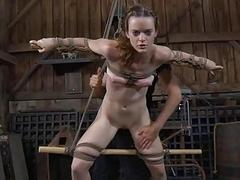 Harsh whipping be advisable for sweet beauty