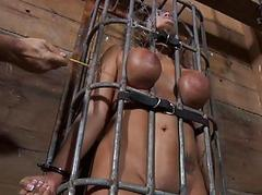 Wild torturing for chap-fallen slave